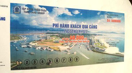 Du khach va doanh nghiep phan ung viec thu phi qua cang Tuan Chau - Anh 2