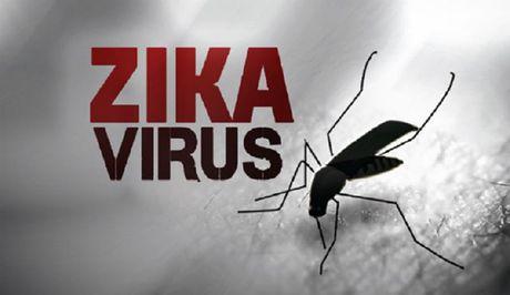 Bo Y te thong bao ca dau nho nghi do Zika dau tien o VN - Anh 1