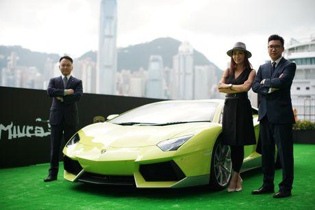 Lamborghini ra mat Aventador ban dac biet - Anh 4