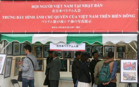 Nguoi Viet Nam tai Nhat Ban huong ve Bien Dong - Anh 1