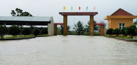 Ha Tinh: Tich cuc chu dong, phong tranh nguy co lu chong lu - Anh 1