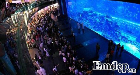 Ho Quang Hieu choang ngop voi mon banh dat vang o Dubai - Anh 2