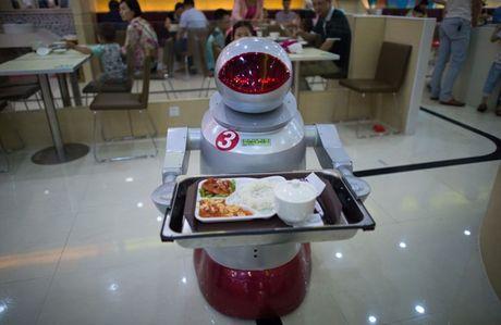 Robot dang dan thay the con nguoi - Anh 1