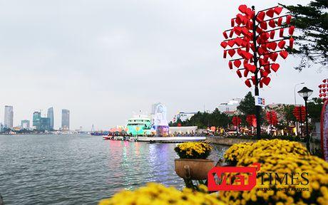 Da Nang phat trien cay xanh do thi don APEC 2017 - Anh 1