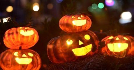 Nguoi Sai Gon thich thu voi vuon bi ngo Halloween - Anh 1