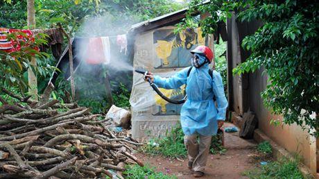 Ca nuoc da ghi nhan 23 truong hop nhiem virus Zika - Anh 1