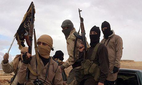 Phien quan Syria thua nhan giai vay that bai tai Aleppo - Anh 1