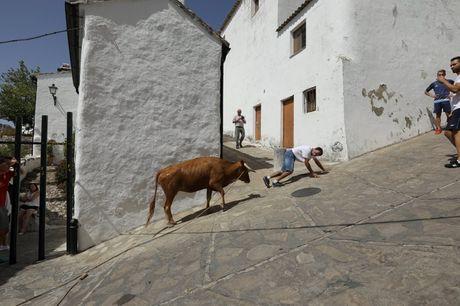 Say long truoc canh sac diem le lang trang Andalusia - Anh 4