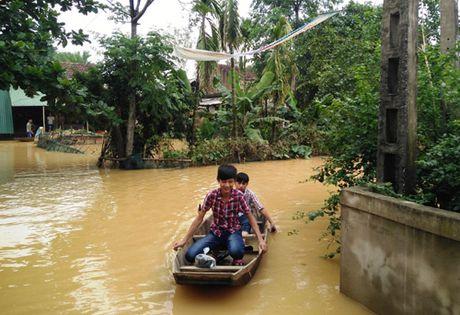 Lu dang len nhan chim hang nghin nha dan tai Quang Binh, Ha Tinh - Anh 1