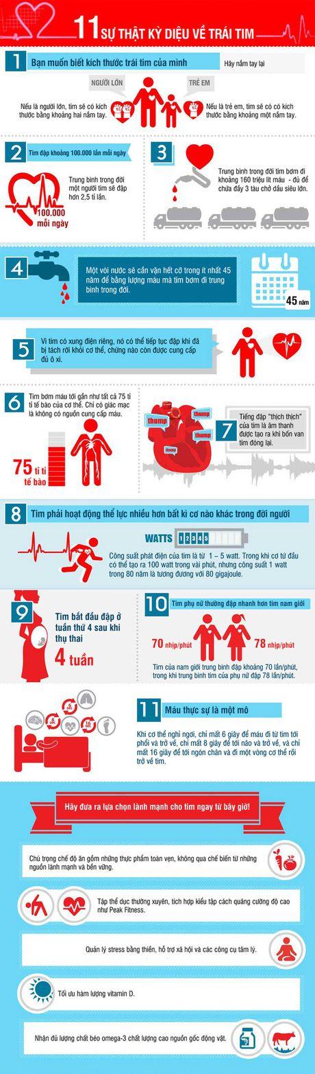 Infographic: Nhung su that ky dieu cua trai tim - Anh 1
