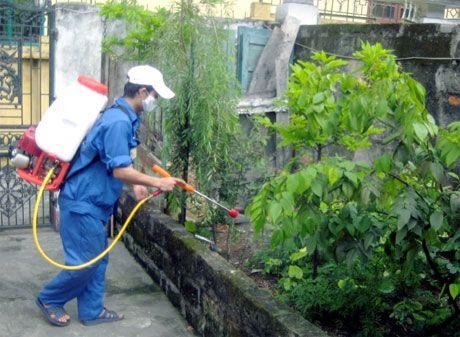 TP.HCM co tat ca 17 truong hop nhiem virus Zika - Anh 1