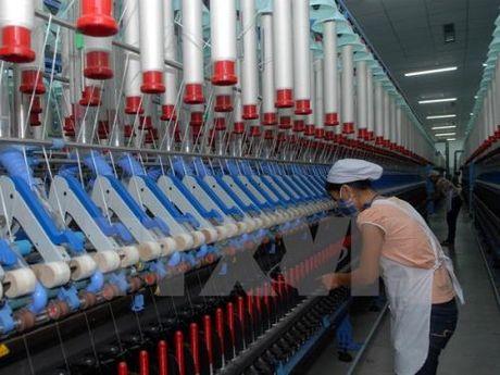 Tang nang luc cho det may Viet Nam trong chuoi cung ung khoi ASEAN - Anh 2