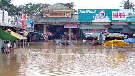 Quang Tri: Hang nghin ho dan bi ngap lut - Anh 1