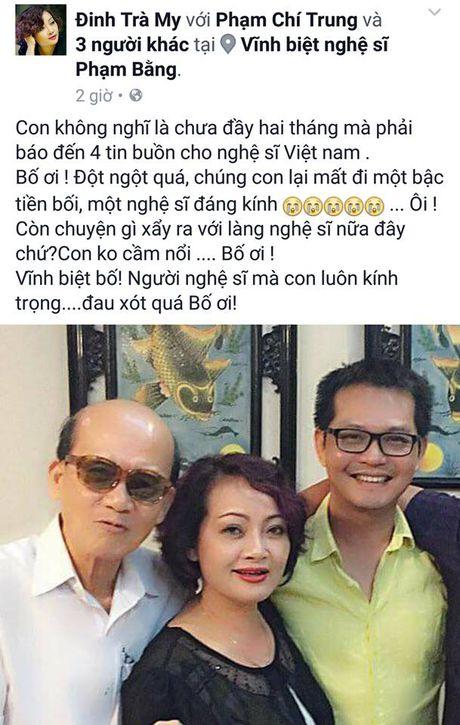 Nghe si Viet dau xot truoc su ra di dot ngot cua NSUT Pham Bang - Anh 2