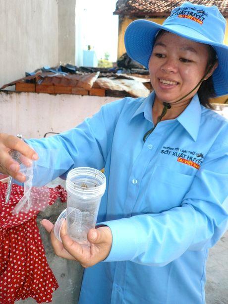 Viet Nam co 'vu khi chien luoc' chong Zika va sot xuat huyet? - Anh 1