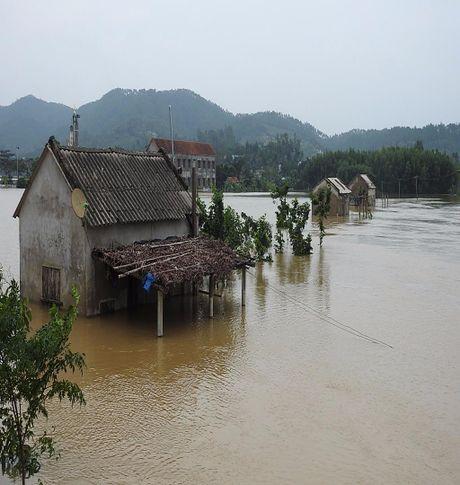 Quang Binh: Lu lon hang ngan ho dan ngap nang - Anh 10