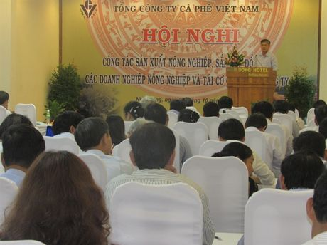 TCty Ca phe Viet Nam tong ket san xuat nong nghiep va tai canh ca phe - Anh 1