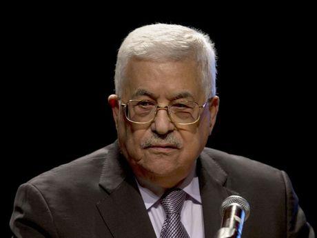 Tong thong Abbas: Hoa binh la muc tieu chien luoc cua Palestine - Anh 1
