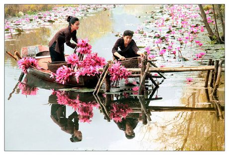 Viet Nam dep mo mang qua ong kinh cua cac nha nhiep anh Ha Noi - Anh 1