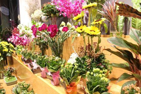 Ra mat shop hoa co thiet ke la mat Casablanca Flowers tai TP.HCM - Anh 4