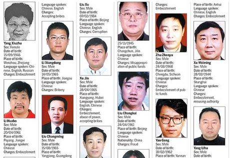 35 quan tham bi Interpol truy na da ve nuoc - Anh 1