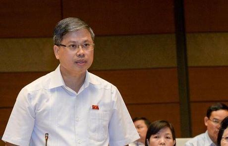 Ong Nguyen Si Cuong: Sao cu chay nha, chet nguoi roi moi 'ra soat, xu nghiem' - Anh 1