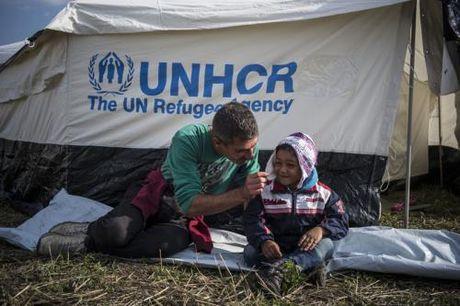 UNHCR tang manh quy ho tro nguoi ti nan - Anh 1