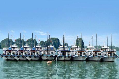 Quang Ninh: 7 chu tau… lang phi 30 trieu dong moi ngay?! - Anh 1