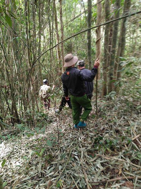 Lam Dong: Nam thanh nien bi lac trong rung sau - Anh 2