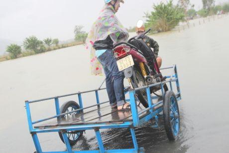Quang Nam: Thuy dien xa nuoc, dan ha du lo lang - Anh 3