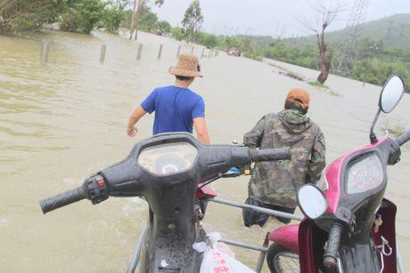 Quang Nam: Thuy dien xa nuoc, dan ha du lo lang - Anh 4