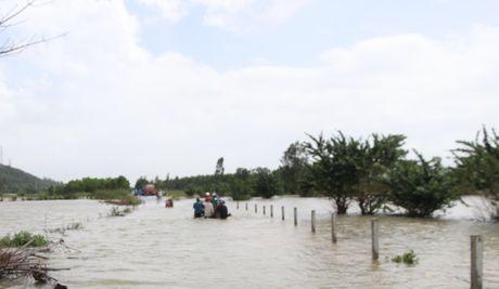 Quang Nam: Thuy dien xa nuoc, dan ha du lo lang - Anh 5
