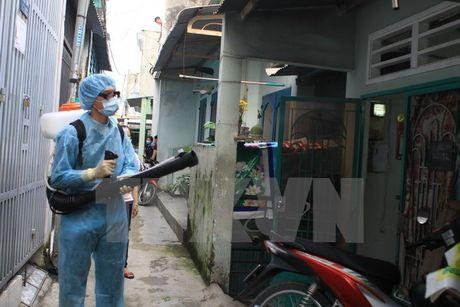 Thanh pho Ho Chi Minh tiep tuc phat hien them cac ca nhiem virus Zika - Anh 1