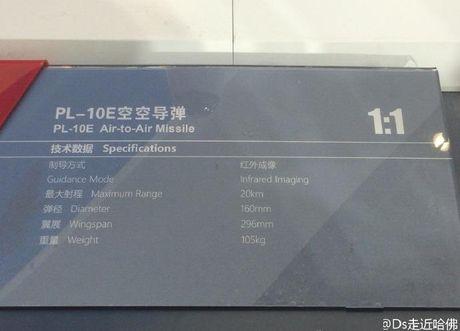 Thuc hu ten lua PL-10E 'dang cap the gioi' cua Trung Quoc - Anh 6