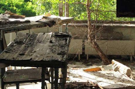 Thi tran Pripyat 30 nam sau tham hoa hat nhan Chernobyl - Anh 10