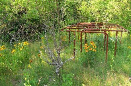Thi tran Pripyat 30 nam sau tham hoa hat nhan Chernobyl - Anh 12