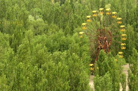 Thi tran Pripyat 30 nam sau tham hoa hat nhan Chernobyl - Anh 13