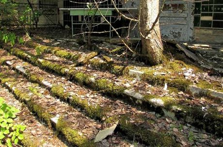 Thi tran Pripyat 30 nam sau tham hoa hat nhan Chernobyl - Anh 2