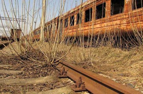 Thi tran Pripyat 30 nam sau tham hoa hat nhan Chernobyl - Anh 4