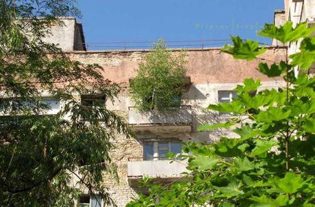 Thi tran Pripyat 30 nam sau tham hoa hat nhan Chernobyl - Anh 8