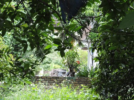 Quang Ninh: Kien nghi cua nhan dan xa Hong Thai Tay - Anh 1
