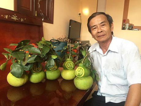 Buoi ho lo Tet Dinh Dau co san pham moi - Anh 2