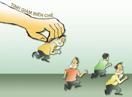 Dai bieu Quoc hoi kien nghi phai giam bien che 20% - Anh 1
