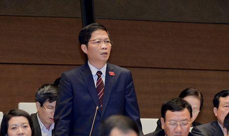 Bo truong Bo cong thuong Tran Tuan Anh giai trinh ve du an 'dap chieu' - Anh 1