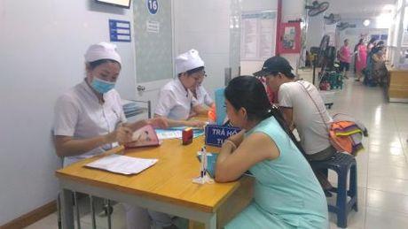 TP Ho Chi Minh thanh lap Ban chi dao phong chong Zika - Anh 1
