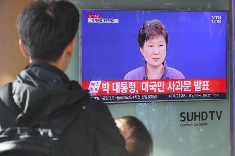 Park Geun-hye, vi tong thong bi 'biet lap' - Anh 1