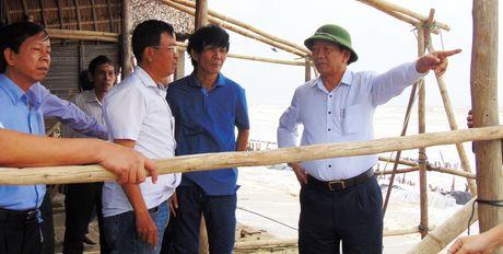 Chu tich tinh Quang Nam chi dao 'nong' tai khu vuc sat lo bien Cua Dai - Anh 5