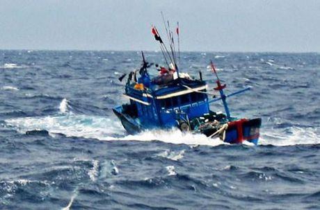 Quang Ngai: Huy dong luc luong tim kiem 4 ngu dan mat tich tren bien - Anh 1