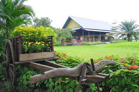 Nhung dia danh hut du khach Viet cua Dong Nai - Anh 14
