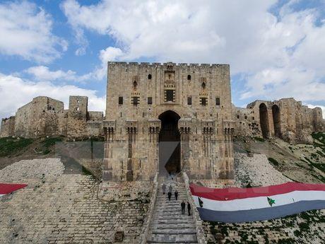 Syria: Lenh ngung ban cua Nga o Aleppo bat dau co hieu luc - Anh 1